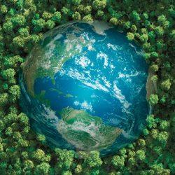 nature 2050